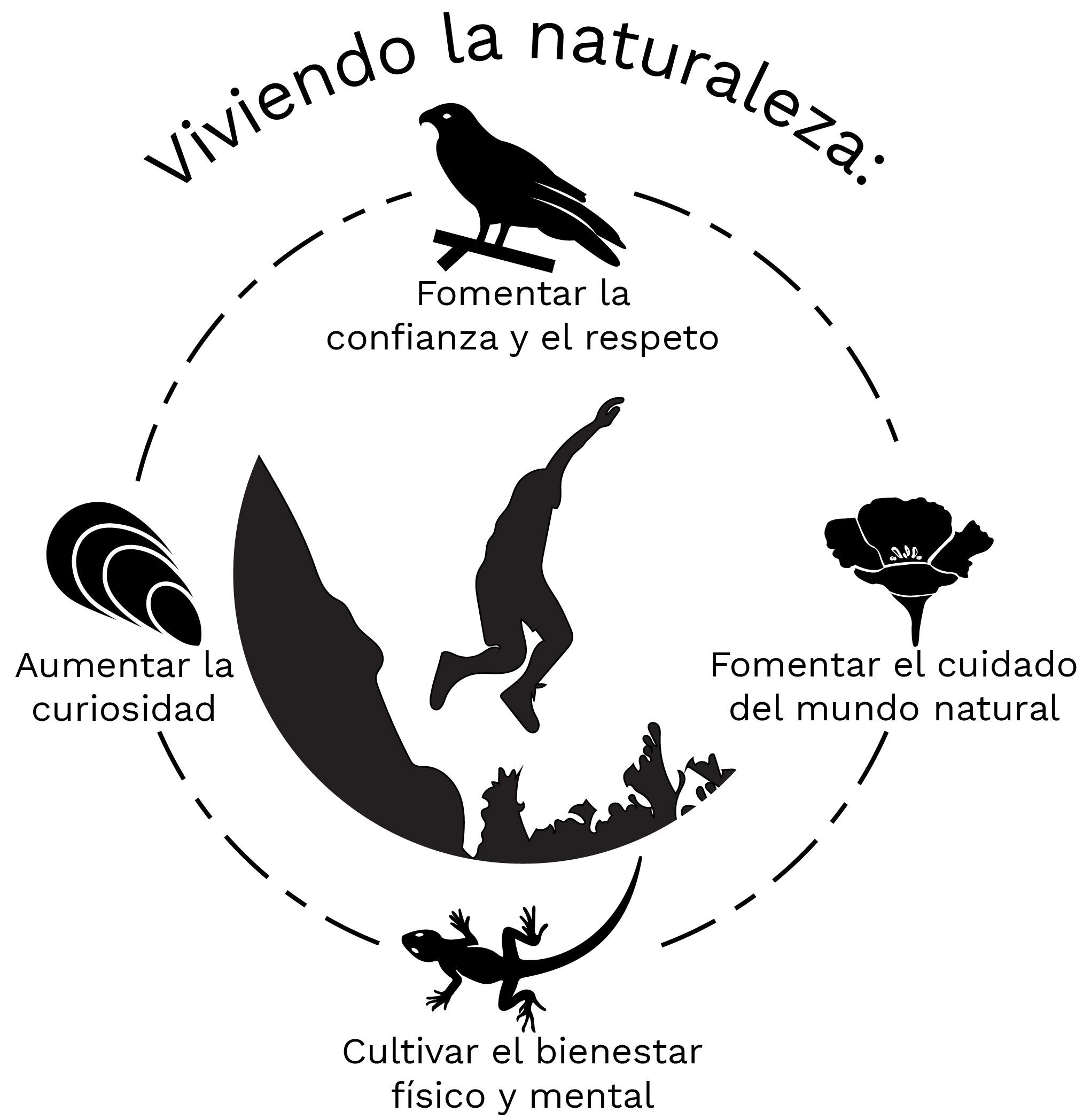 Core Values Graphic Spanish